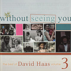 Without Seeing You: The Best of David Haas, Vol. 3