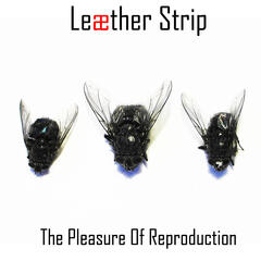 The Pleasure of Reproduction