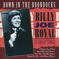 Down In The Boondocks - 20 Great Songs