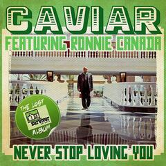 Never Stop Loving You (Digitally Remastered)
