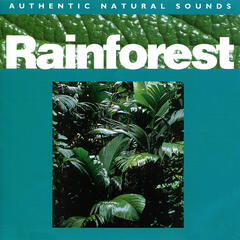 Rainforest - Relax with Nature