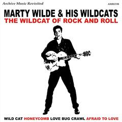The Wildcats of Rock and Roll - EP