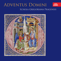 "Adventus Domini. Advent ""Rorate Mass"" in Bohemia in the 15th and 16th century"