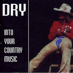 Into Your Country Music