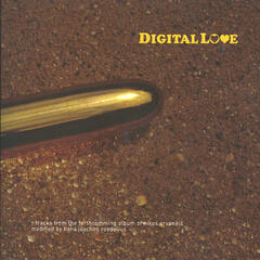 Digital Love - modified by Roedelius