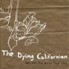 We Are The Birds That Stay