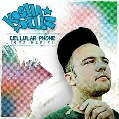 "Cellular Phone Remix (Digi 12"")"