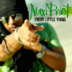 Every Little Thing - Single