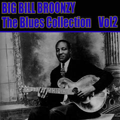 The Blues Collection Vol 2