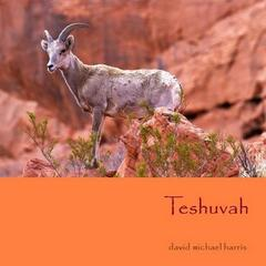 Teshuvah - Single