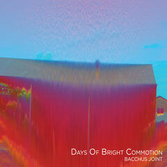 Days Of Bright Commotion