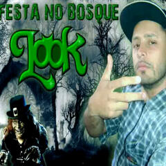 Festa no Bosque (feat. Duck Jay) - Single