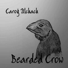 Because Of The Bearded Crow