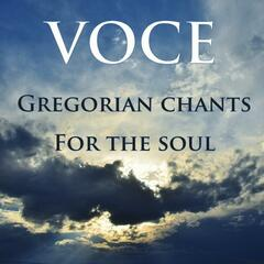 Gregorian Chants for the Soul