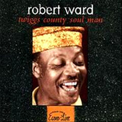 Twiggs County Soul Man