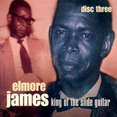 King Of The Slide Guitar - Disc Three