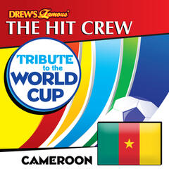 Tribute to the World Cup: Cameroon