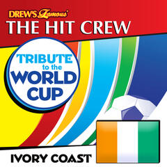 Tribute to the World Cup: Ivory Coast