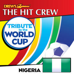 Tribute to the World Cup: Nigeria
