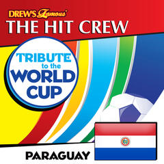 Tribute to the World Cup: Paraguay
