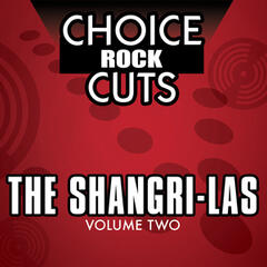 Choice Rock Cuts, Vol. 2