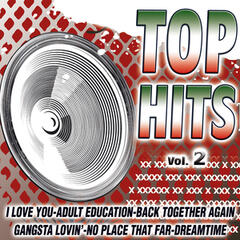 Top Hits Vol. 2