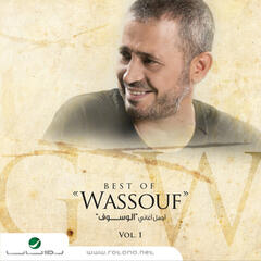Best of Wassouf