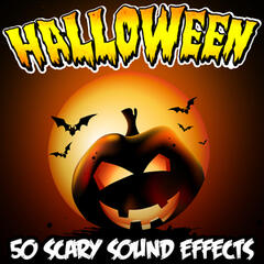 Halloween 50 Scary Sound Effects