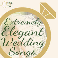 Extremely Elegant Wedding Reception Instrumental Songs by Tie the Knot Tunes