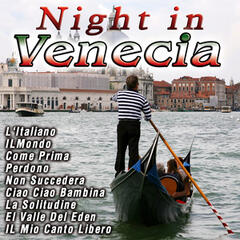 Night In  Venecia