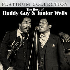 The Best of Buddy Guy and Junior Wells