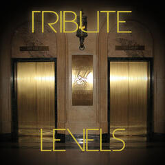 Levels (Avicii Tribute) - Single