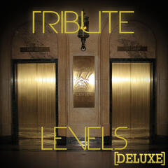 Levels (Avicii Deluxe Tribute) - Single