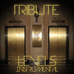 Levels (Avicii Instrumental Tribute) - Single