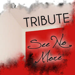 See No More (Joe Jonas Tribute) - Single