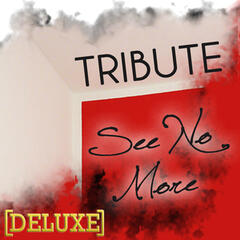 See No More (Joe Jonas Tribute) - Deluxe Single