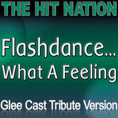 Flashdance...What a Feeling - Glee Cast Tribute Version