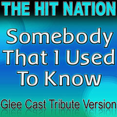 Somebody That I Used to Know - Glee Cast Tribute Version