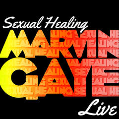 Sexual Healing (Live)