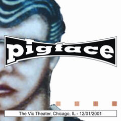 The Vic Theater, Chicago, IL 12/01/2001