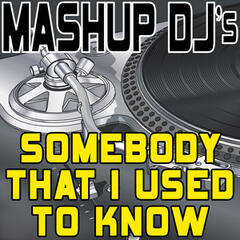 Somebody That I Used to Know (Remix Tools for Mash-Ups)
