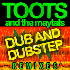 Dub and Dustep Remixes