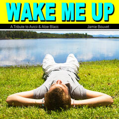 Wake Me Up (A Tribute to Avicii & Aloe Blacc)