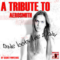 A Tribute to Aerosmith