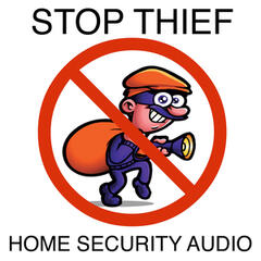 Stop Thief Home Security Audio