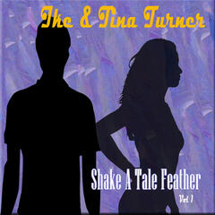 Shake a Tale Feather, Vol. 1