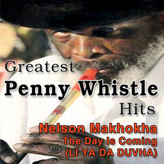Greatest Penny Whistle Hits (The Day Is Coming, Li Ya Da Duvha)