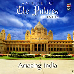 An Ode To The Palaces of India