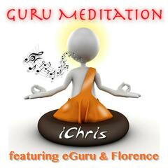 Guru Meditation (Radio Single)