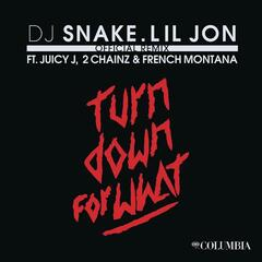 Turn Down for What (Official Remix)